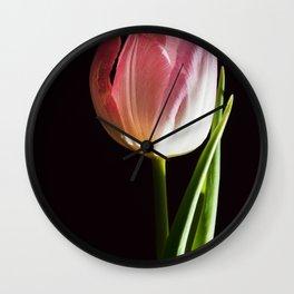 Macro pink tulip Wall Clock