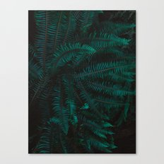 Blue Fern Twilight Canvas Print
