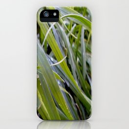 water and greenery iPhone Case