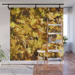 Autumnal Colours Wall Mural