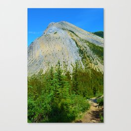 Sulphur Skyine Hike in Jasper National Park, Canada Canvas Print