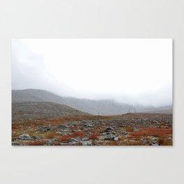 Sub-polar ural mountais. Tundra landscape. Canvas Print
