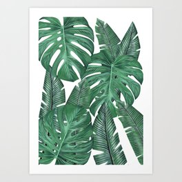Tropical Leaves Art Print Art Print
