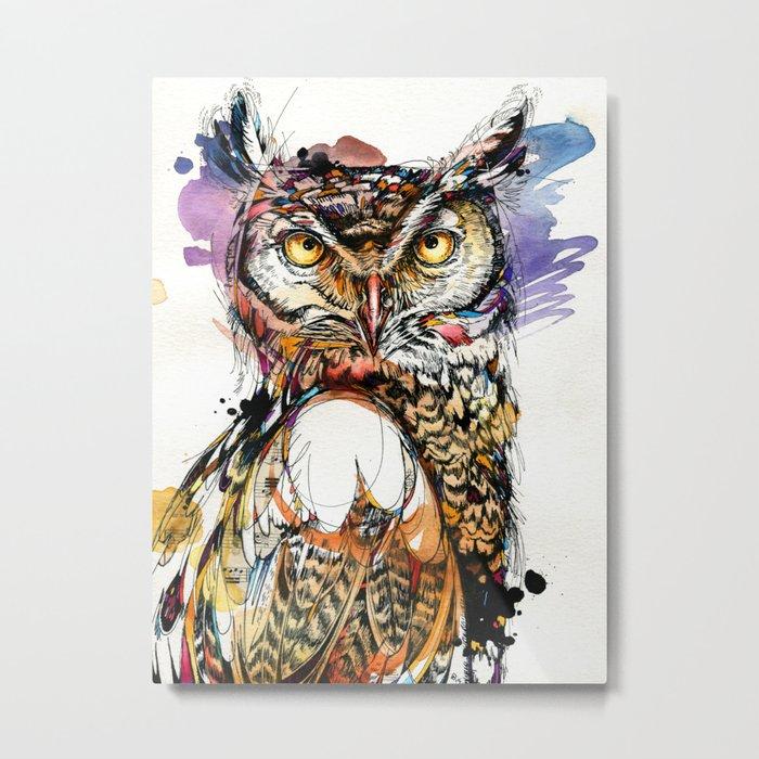 Owl Sounds Metal Print