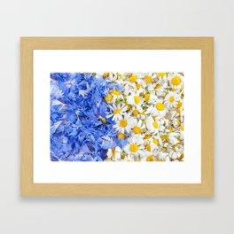 Blue cornflower and white chamomile Framed Art Print