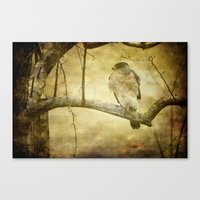 hunter Canvas Prints featuring Hunter by Curt Saunier