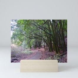 the mossy path Mini Art Print