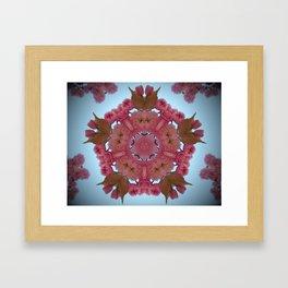 Blossom K1 Framed Art Print