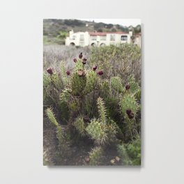 Moody Prickly Pear Metal Print