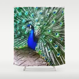Painted Peacock Shower Curtain