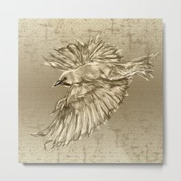 Golden dove Metal Print