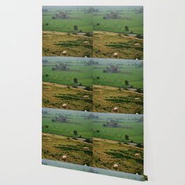 Hore Abby, Ireland Wallpaper