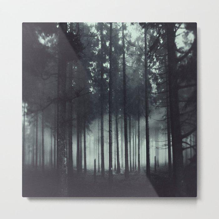 Shadow and Light Metal Print