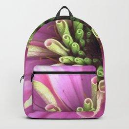Pink to Green Unfurling Zinnia Flower Petals Close-Up Backpack