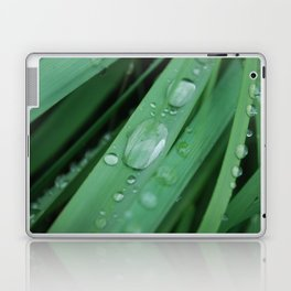 water on grass Laptop & iPad Skin