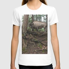 Rustic Buffalo in the Woods T-shirt