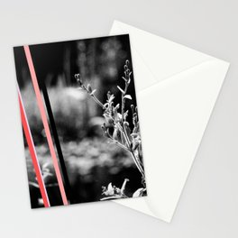 garden stripes Stationery Cards