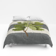 botanical stripes 5 -gray Comforters