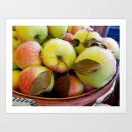 Rainy Apple basket Art Print