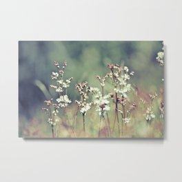 Sorrel Meadow Metal Print