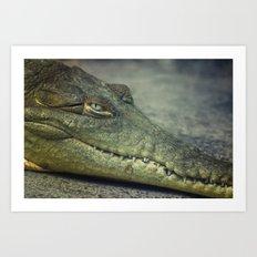 Smiling Crocodile Art Print
