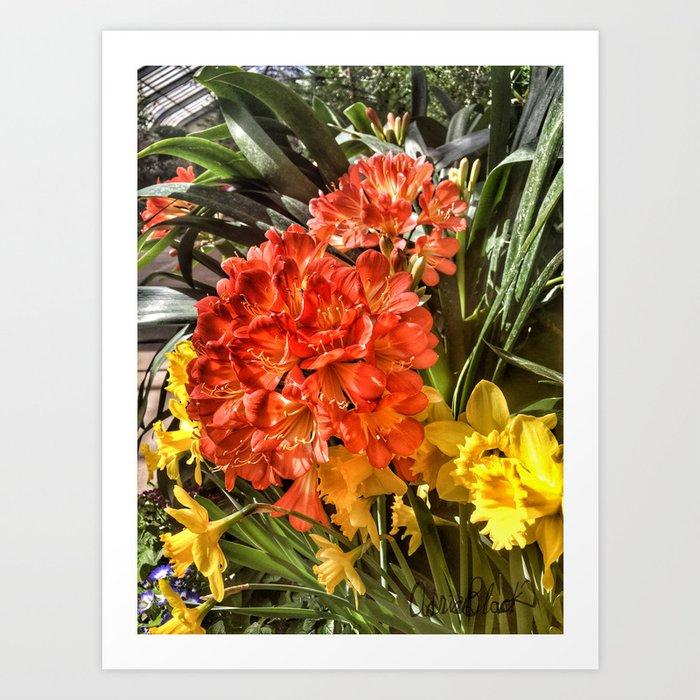 Orange Spring Flowers And Yellow Daffodils Art Print By Adriablack
