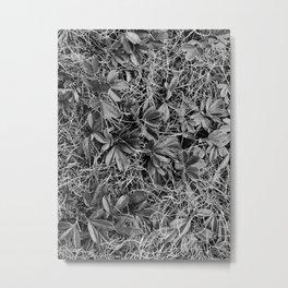 B&W Autumn Turf Metal Print
