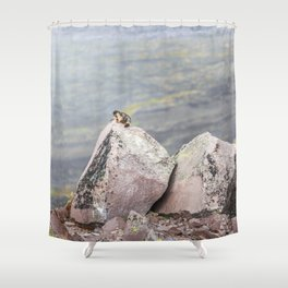 Extremal Groundhog  or King of the Mountain Shower Curtain