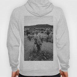 Cholla Cactus Garden V Hoody