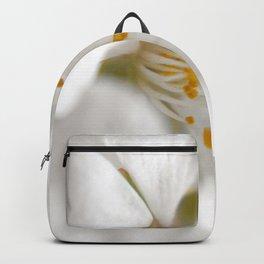 Bloom in Hiding Backpack