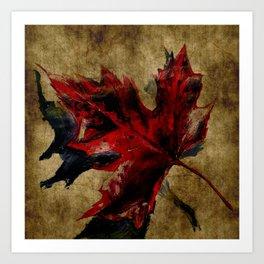 Canadian Maple Leaf Fall Edit  Art Print