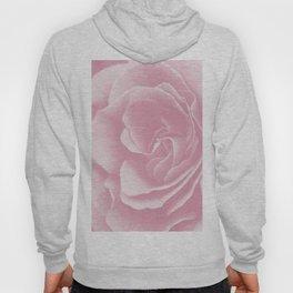 Light Pink Rose #2 #floral #art #society6 Hoody