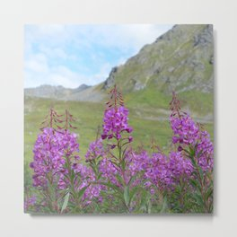 Hatcher Pass Fireweed Metal Print