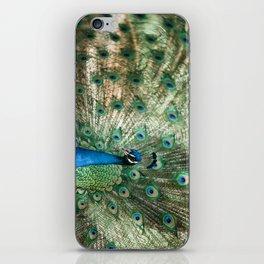 Peacocking iPhone Skin