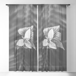 Trillium Flowers Pacific Northwest - Black and White Nature Photography Sheer Curtain