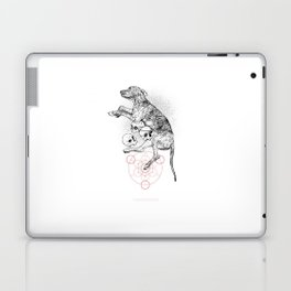 Partial Fractions Laptop & iPad Skin