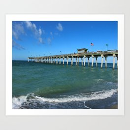 Winter In Florida Art Print