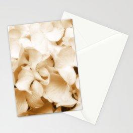 Nostalgic Hydrangea Floral Stationery Cards