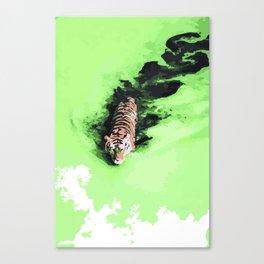 Pantheras tigris x1 Canvas Print