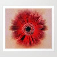 blush Art Prints featuring Blush by SexyEyes69