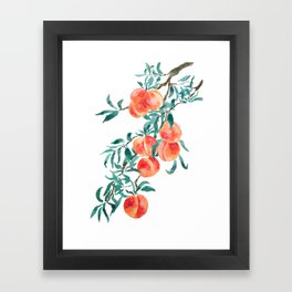 peach watercolor Framed Art Print