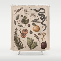 florida Shower Curtains featuring Florida Nature Walks by Jessica Roux