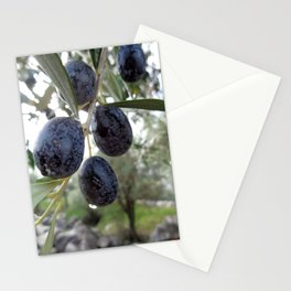 Olives in the Rain Stationery Cards