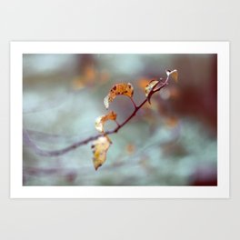 Fall Leaves Haiku Art Print