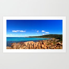 Point Picquet Art Print