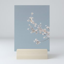 cherry blossom iii Mini Art Print