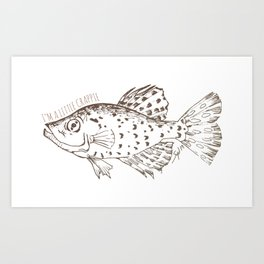 I'm a little Crappie, Funny Fish Illustration Art Print