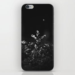 Nature Shots in Black and White.    Butterfly. Forests.    Leaves.    Brunches.    Latvia.    Latvia iPhone Skin