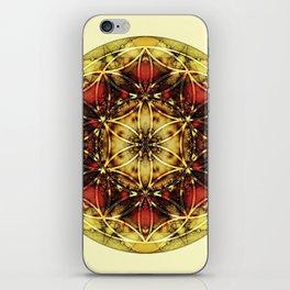 Sacred Geometry Mandalas 4 iPhone Skin
