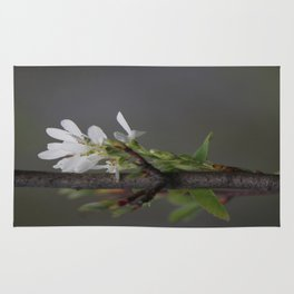 Twig and Blossom Rug